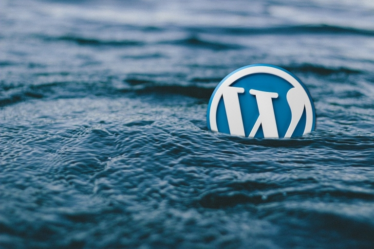 Do You Know The Pros and Cons of a WordPress Website?